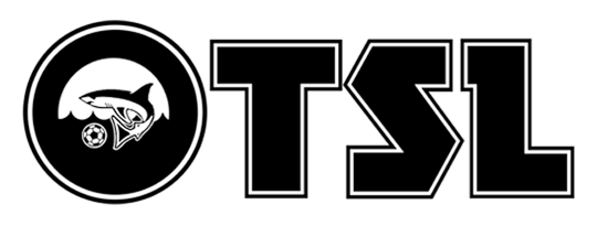 Virginia Beach OTSL Men's Soccer League